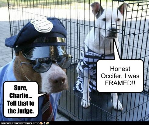 Honest Occifer, I was FRAMED!! Sure, Charlie... Tell that to the Judge.