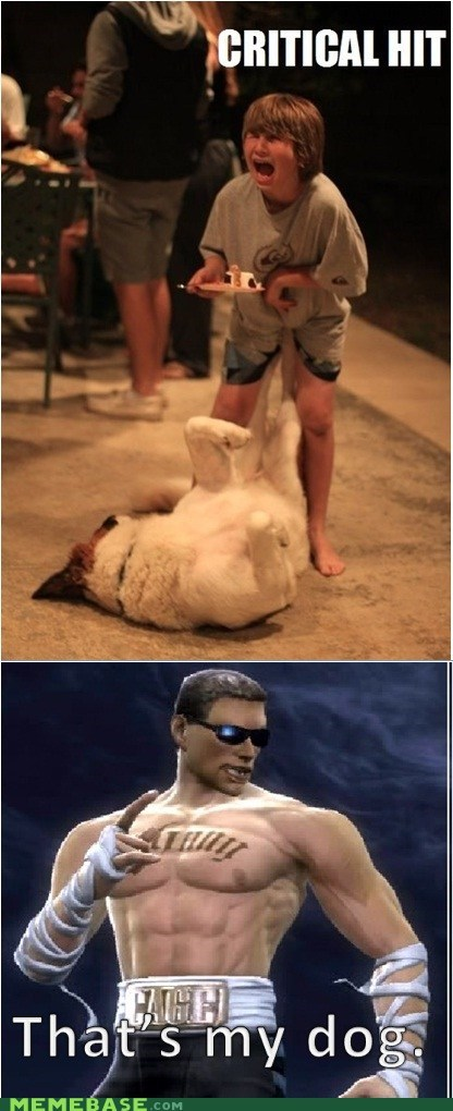johnny cage,mortal combat,dogs,critical hit