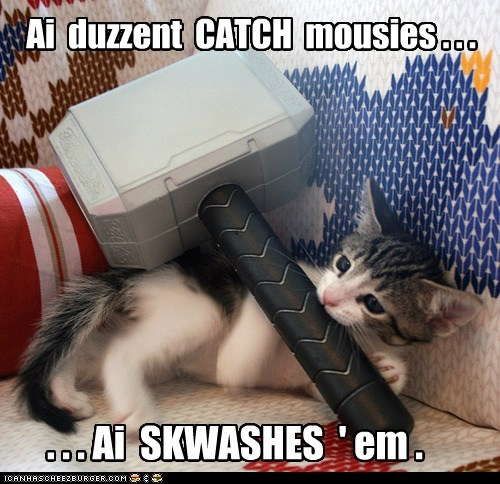 mouse,Thor,mjolnir,hammer,avengers,marvel,smash,crush,Cats,captions