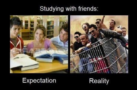studying with friends,expectation,reality,studying,procrastinating