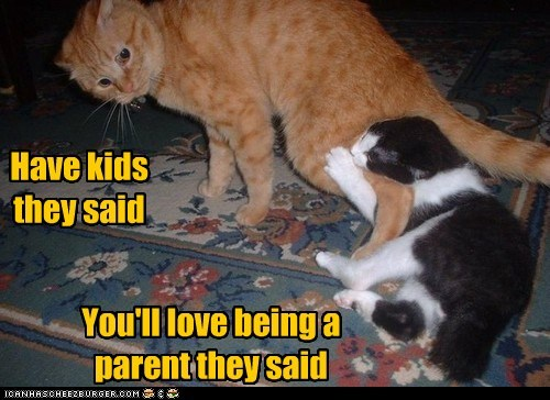 kids children parents parenthood Cats captions They Said