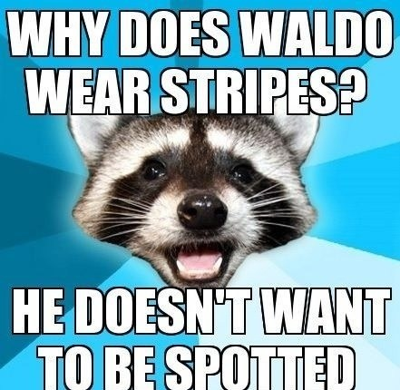 wheres waldo,waldo,stripes,spotted,Lame Pun Coon