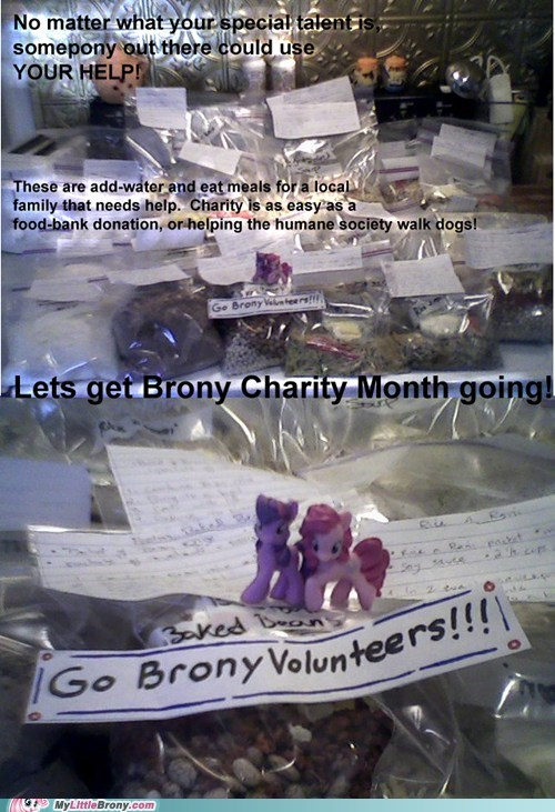 brony charity month,charity,volunteering,restoring faith in humanity week