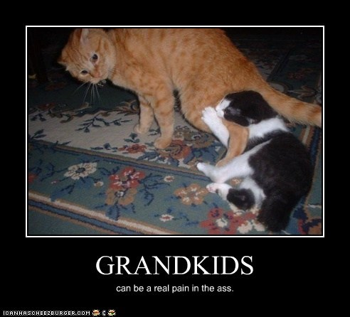 GRANDKIDS can be a real pain in the ass.