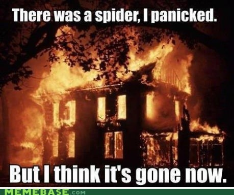 spider,panic,fire,burn it all