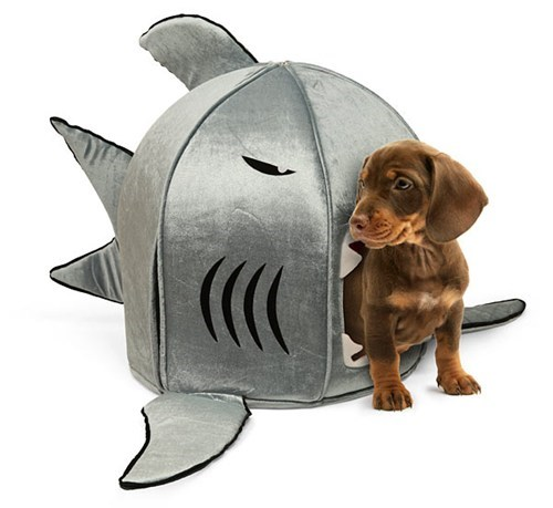 dogs,goggie swag,pet beds,shark,nanotech,dog bed
