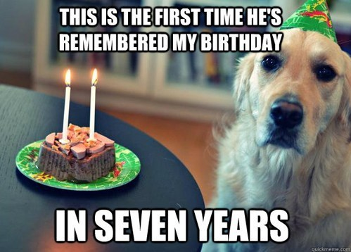 dogs birthday dog years age time is relative - 6662997504