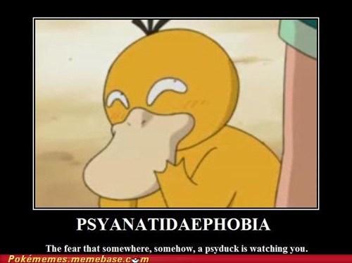 phobia,Pokémon,psyanatidaephobia,Psyduck