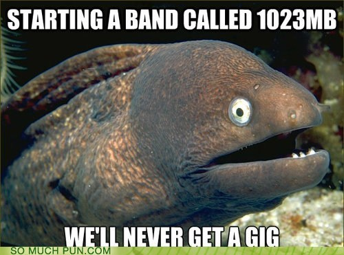 Bad Joke Eel,1023 mb,gig,double meaning,literalism,band,show,data,unit of measurement