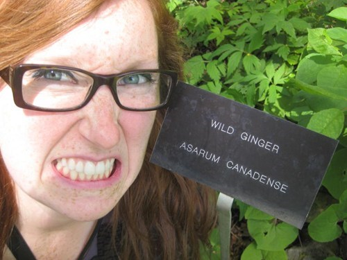 ginger pun sign redhead best of week Hall of Fame - 6663608320