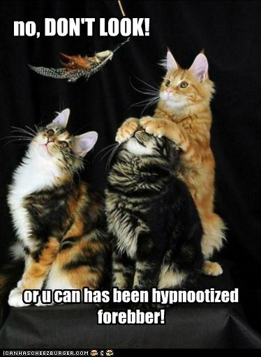 no, DON'T LOOK! or u can has been hypnootized forebber!