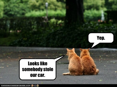parking lot,car,captions,stole,Cats,carjack,thief