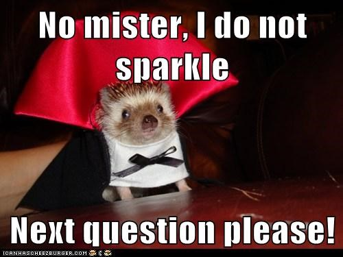 question,costume,vampire,hedgehog,twilight,insult,Sparkle,interview