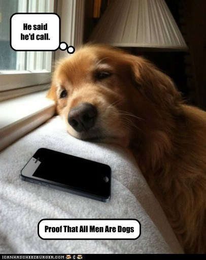 dogs,men,cell phone,sad dog,golden retriever,dating