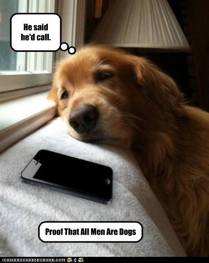 men cell phone sad dog golden retriever dating - 6664954368
