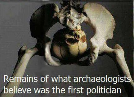 politics because butts skeleton - 6665174016