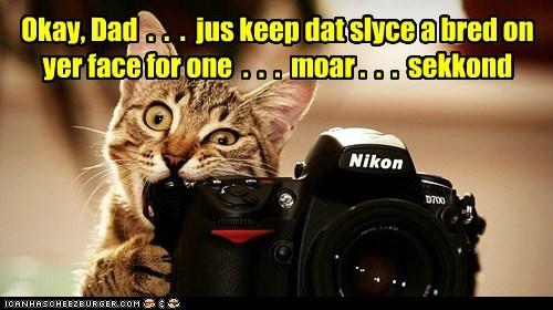 inbread bread face revenge picture camera Cats captions - 6665413632