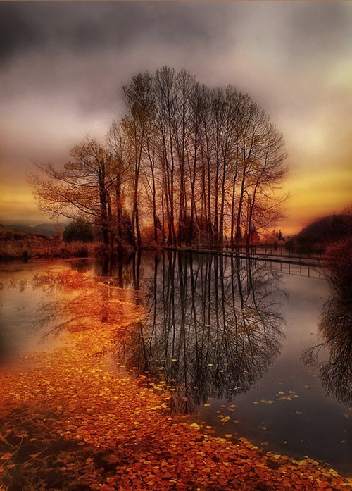 hdr,photography,fall,lake,leaves,pretty colors