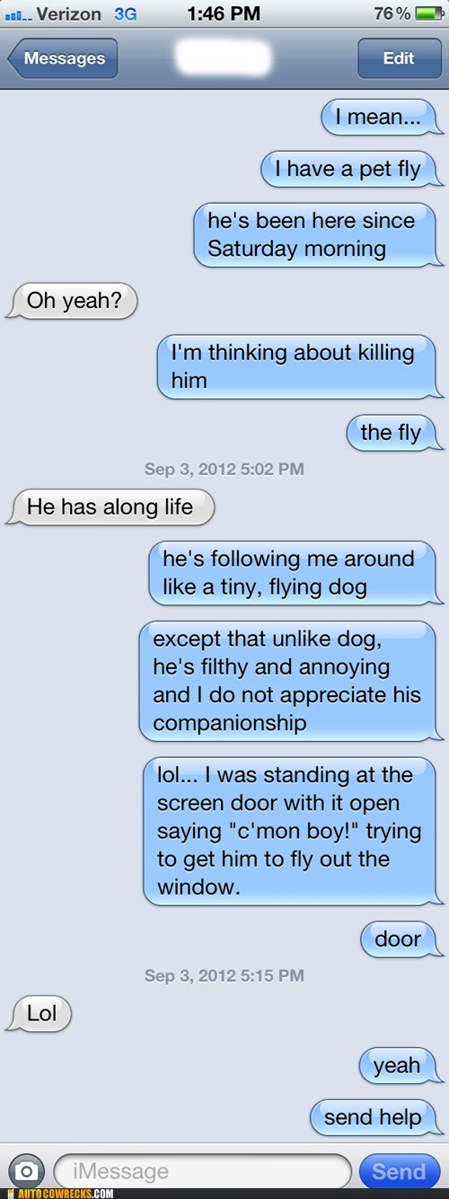 pet fly iPhones killing him pets dogs - 6665724928