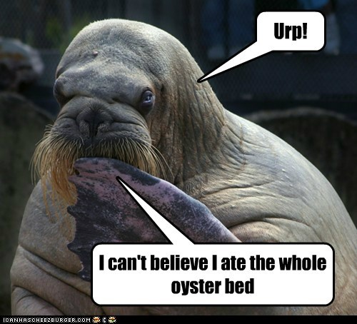 Urp! I can't believe I ate the whole oyster bed