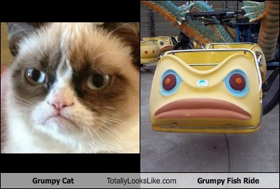 funny TLL Grumpy Cat animal cat ride fish Carnival - 6666673152