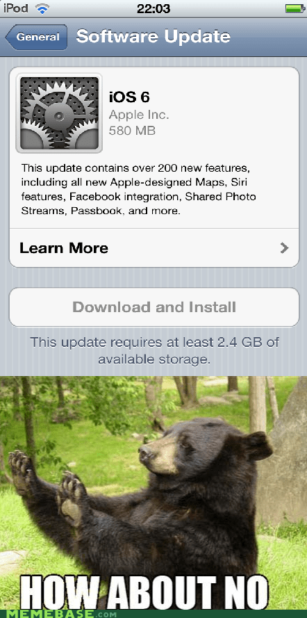how about no,bear,ios6,apple