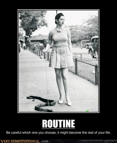 routine snake fun wtf - 6667637504