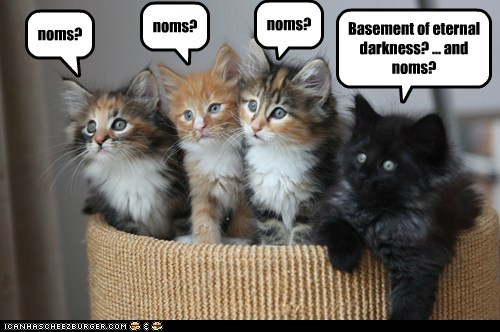 basement cat,basement,black sheep,captions,nom,odd duck,Cats,darkness