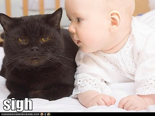 baby gross captions ugh Cats - 6668547584