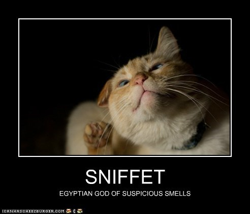 SNIFFET EGYPTIAN GOD OF SUSPICIOUS SMELLS