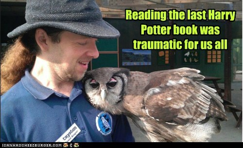 Sad Harry Potter hugging comfort Owl book traumatic - 6669231360