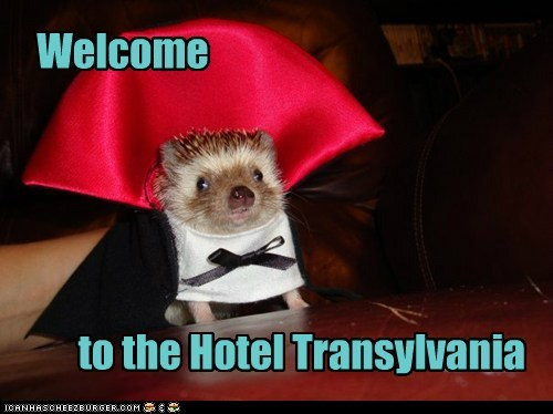 Welcome to the Hotel Transylvania
