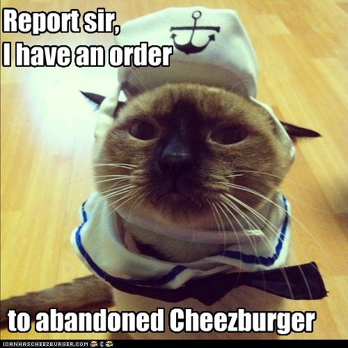 Cheezburger Image 6670410240