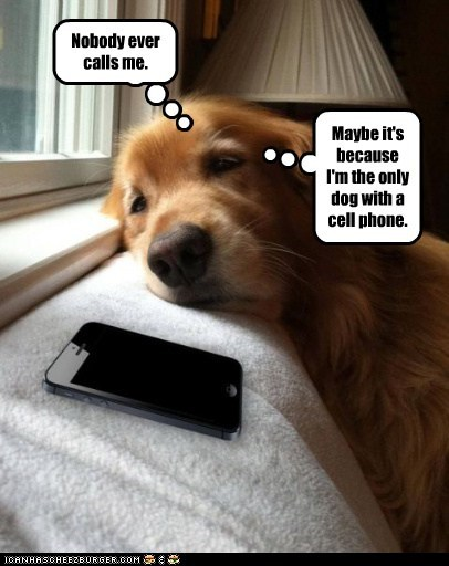 Nobody ever calls me. Maybe it's because I'm the only dog with a cell phone.