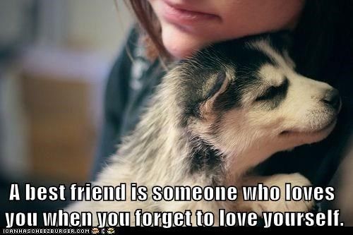 dogs,puppy,husky,best friend,huskie,love