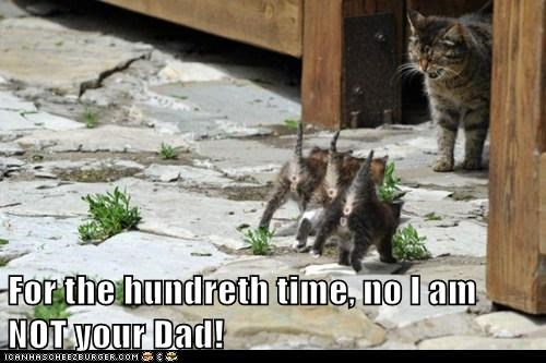 For the hundreth time, no I am NOT your Dad!