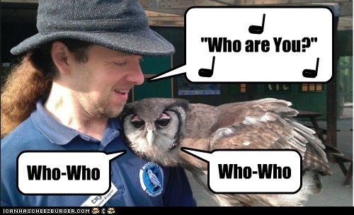 hoot,singing,the who,Owl,who are you