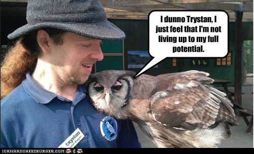 I dunno Trystan, I just feel that I'm not living up to my full potential.