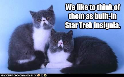 We like to think of them as built-in Star Trek insignia.