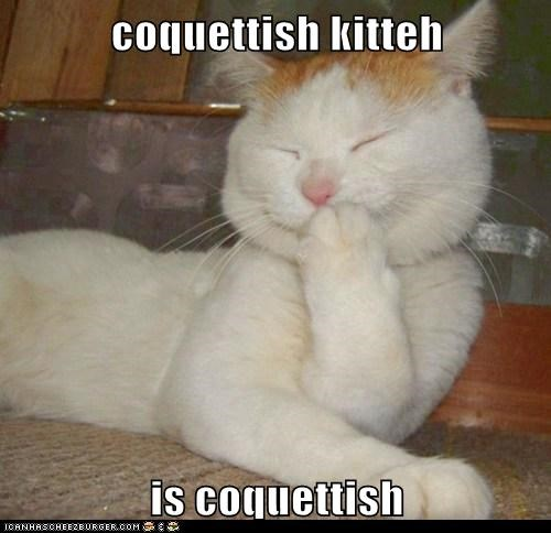 coquette,tee hee,Cats,captions,blush
