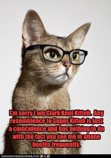 Cheezburger Image 6673984512