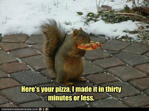pizza squirrel fast 30 minutes or less delivery
