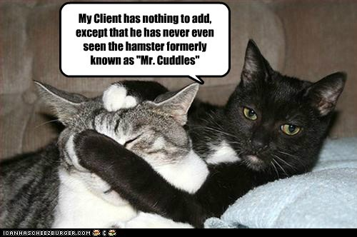 lawyer client murder trial judge Cats captions