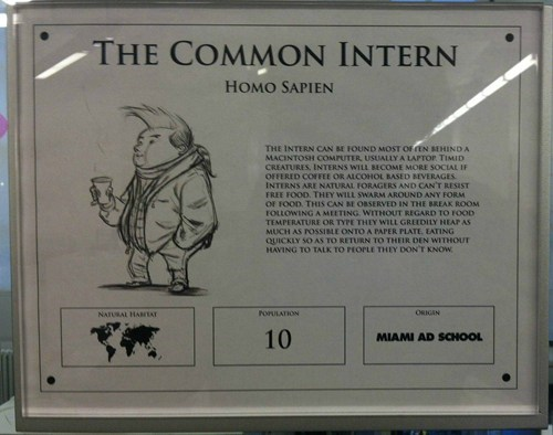 museum exhibit Art Exhibit common intern homo sapiens - 6674481408