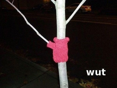 trees sweater cold wut