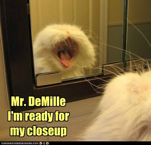 Mr. DeMille I'm ready for my closeup