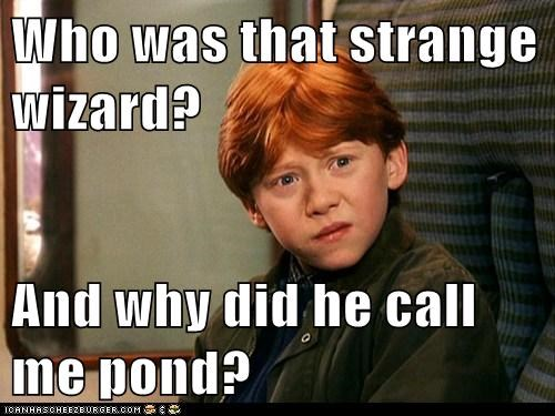 Harry Potter,the doctor,wizard,pond,confused,rupert grint,Ron Weasley,who