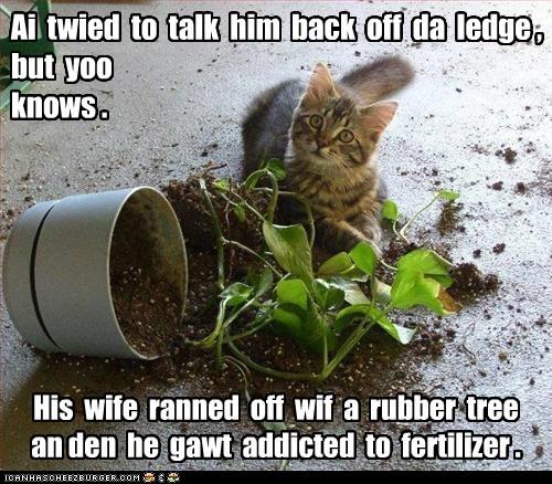 jump captions suicide Cats plant - 6675072512