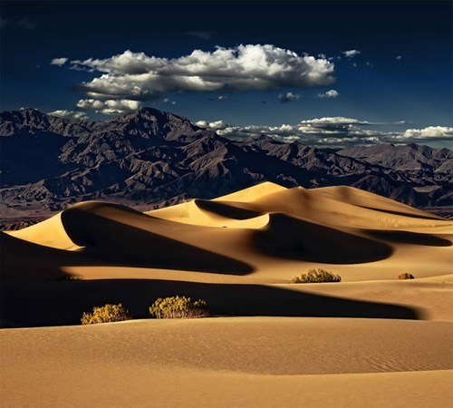 nature,photography,dunes,sand