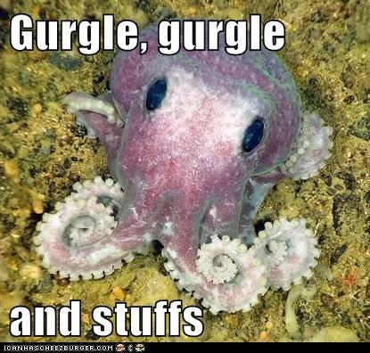 baby and stuff cute gurgle line octopus - 6675809792